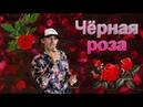 Чёрная роза - Сергей Орлов