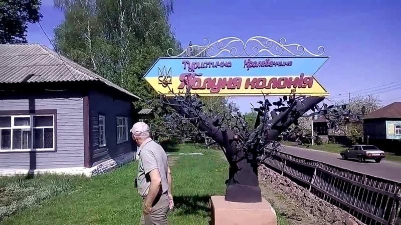 Кролевец яблоня колония Николай Ковинькин
