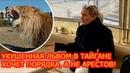 Укушенная львом в Тайгане туристка хочет наведения порядка, а не арестов