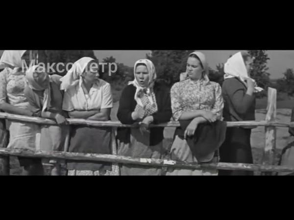 Бабье Царство Режисер А Салтыков 1967 г Максометр Мужское движение