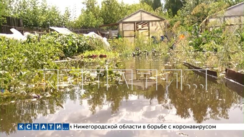 Коммунальная катастрофа в Балахне превратила огороды в болото в котором вязнут их владельцы