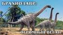 БРАХИОЗАВР Почти самый высокий и большой травоядный динозавр Интересные факты про динозавров