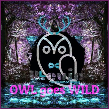 OWL goes WILD