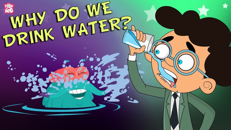 Why Do We Drink Water Importance Of Water Stay Hydrated The Dr Binocs Show Peekaboo Kidz