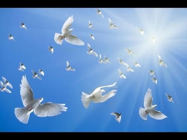 А В Клюев Духовное рождение пребывание в Божественном часть 1 2