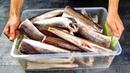 Скупил всю рыбу и готовлю ящиками третий день! Утерянный рецепт с Дальнего Востока!
